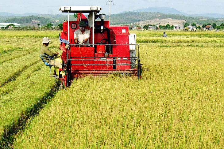 Agricultural sector moves from negative to positive growth   - ảnh 1